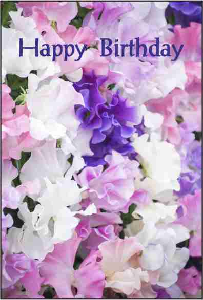 BirthdayCards/BD9.jpg